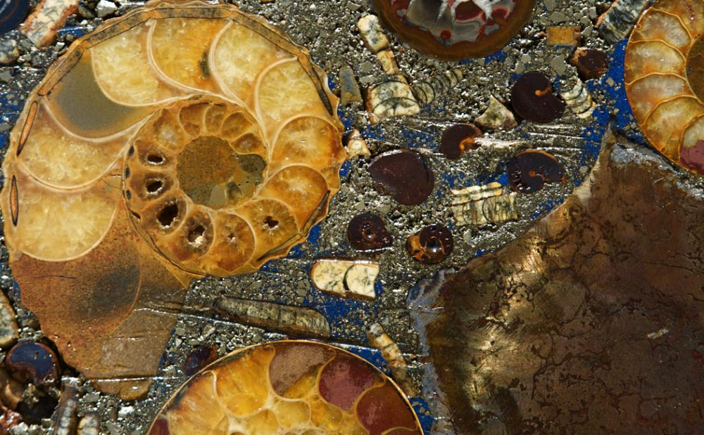 Astonishing fossils, minerals and gemstones from the depth of our planet